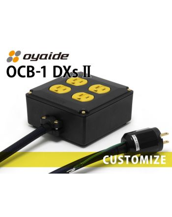 OCB-1 DXs Ⅱ カスタム